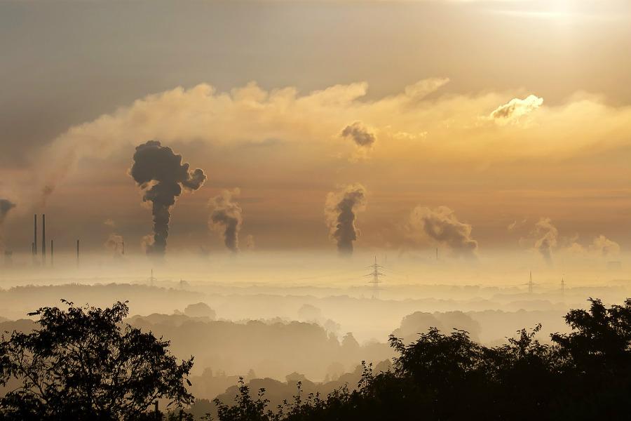 Empezando a combatir la contaminación.